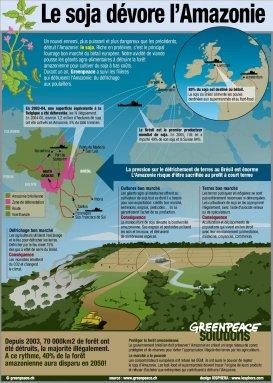 info amazonie